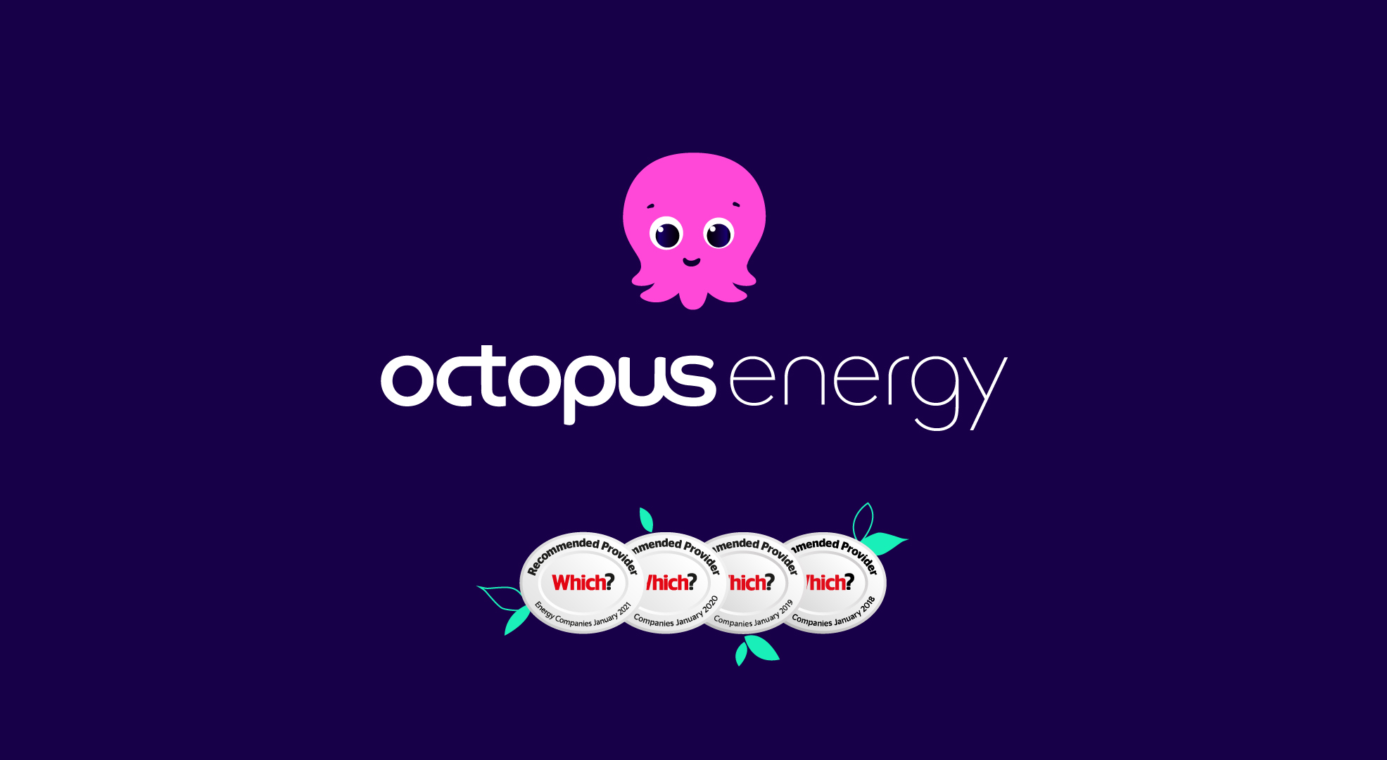 Octopus Energy A New Breed Of Energy Supplier