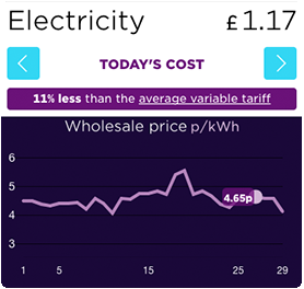 An overview of how the tracker tariff shows the price of energy each day