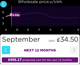 A graph showing an annual forecast of your energy price